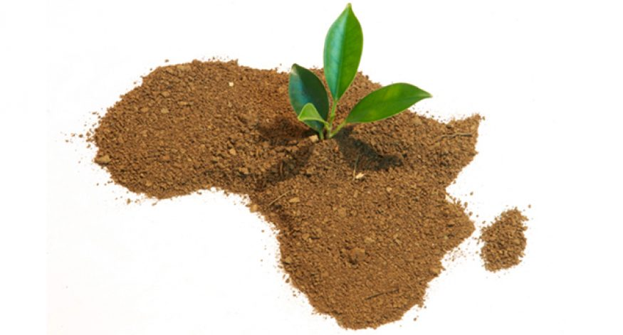 Africa's Next Greatest Goldmine: Youth Entrepreneurs